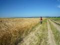 Cyklista u Baťův kanál