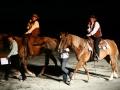 Kostelany nočka dva koně